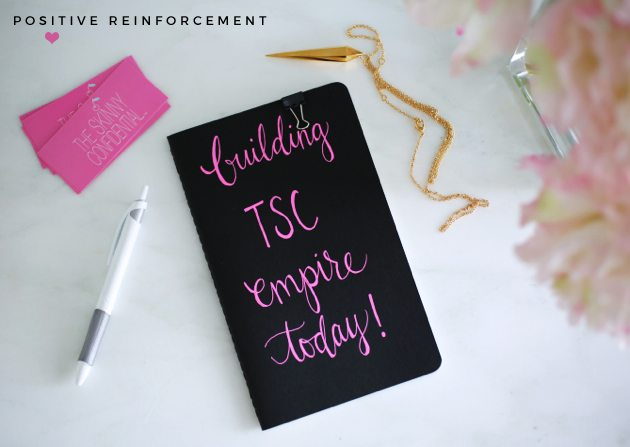 positive reinforcement | by the skinny confidential