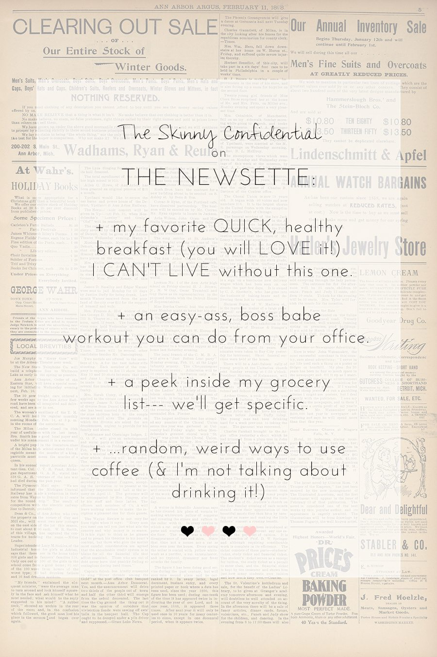 the skinny confidential on THE NEWSETTE | by the skinny confidential