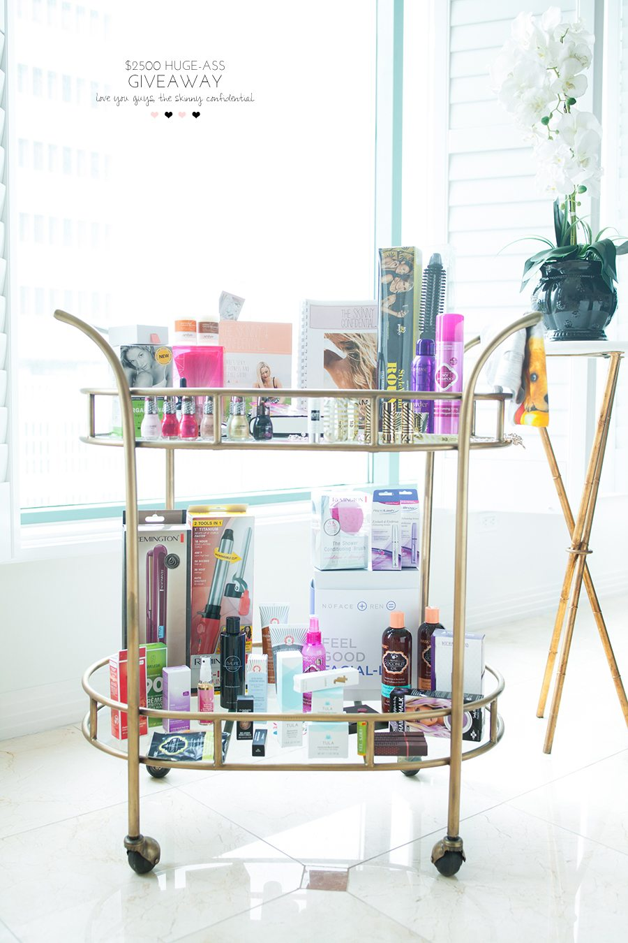 beauty giveaway 17 | by the skinny confidential